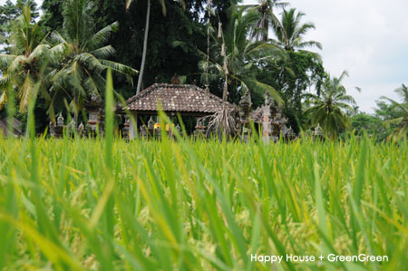 100416_Bali.JPG
